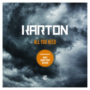 Image pour 'All you need'