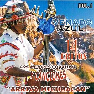 Immagine per 'Arriva Michoacan'