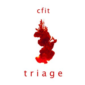 Image for 'Triage'