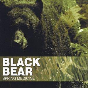 Image for 'Spring Medicine'