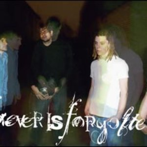 Image for 'Forever Is Forgotten'