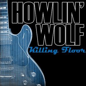 Image for 'Killing Floor'