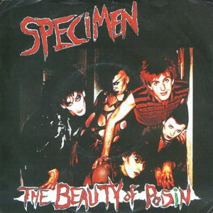 Image for 'The Beauty of Poisin'