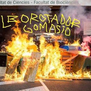 Image for 'Alborotador Gomasio'