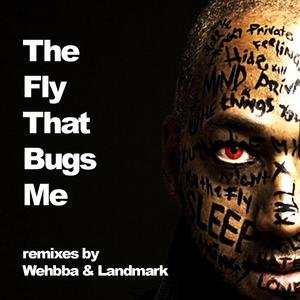 Bild für 'The Fly that Bugs me - the remixes'