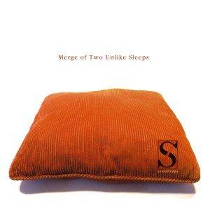 Image for 'Merge Of Two Unlike Sleeps'