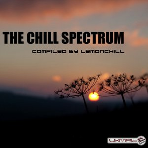 Image pour 'The Chill Spectrum'