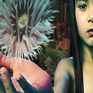 Immagine per 'Lifeforms (Path 2)'