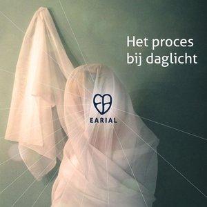 Image for 'Het Proces bij Daglicht'