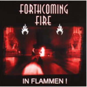 Image for 'In Flammen'