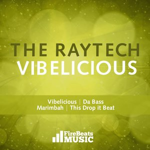 Image for 'The Raytech - Vibelicious EP'