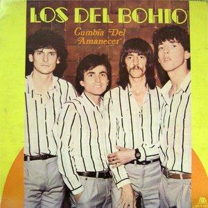 Image for 'Los Del Bohio'