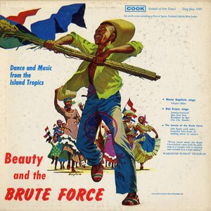 Image for 'Brute force steel band'