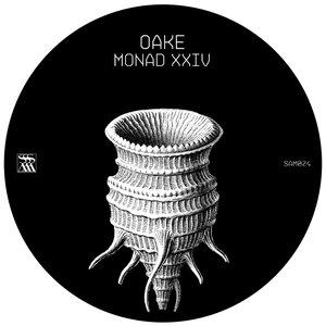 Image for 'Monad XXIV'