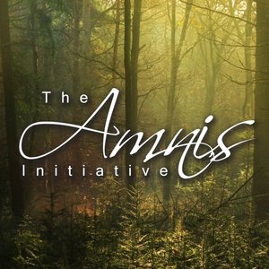 Image for 'The Amnis Initiative'