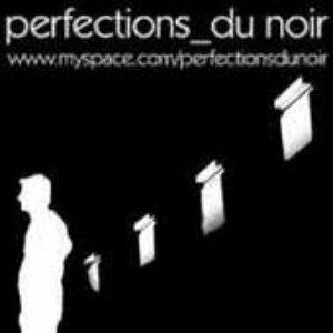 Image for 'perfections du noir'