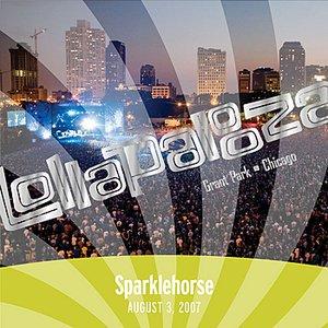 Immagine per 'Live at Lollapalooza 2007: Sparklehorse'