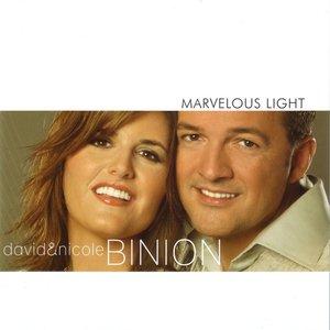 Image for 'Marvelous Light'