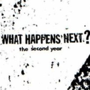 Image for 'The Second Year'