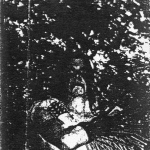 Image for 'Grausamkeit'