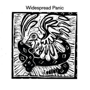 Image for 'Widespread Panic'