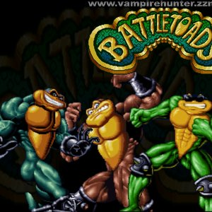 Image for 'Battletoads & DD'