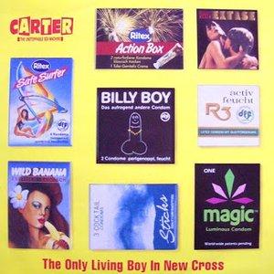 Bild för 'The Only Living Boy in New Cross'
