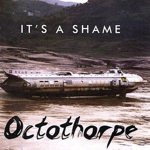 Image for 'It's A Shame'