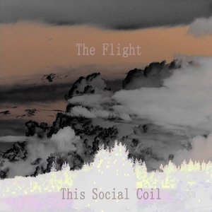 Image for 'The Flight'