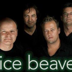 Image for 'Nice Beaver'