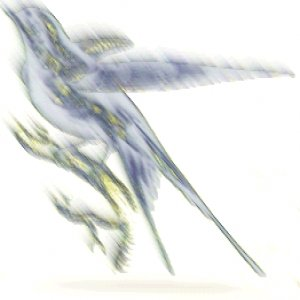 Image for 'Erinran'