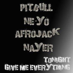 Bild für 'Pitbull Feat. NeYo, Nayer  & Afrojack'
