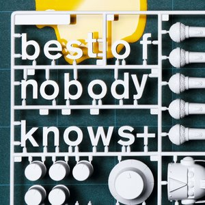 Image pour 'Best of nobodyknows+'