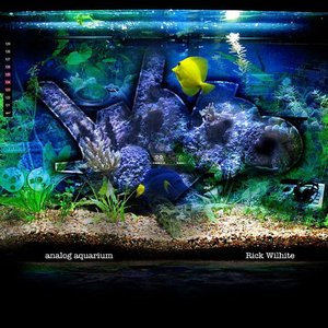 Imagem de 'Analog Aquarium'