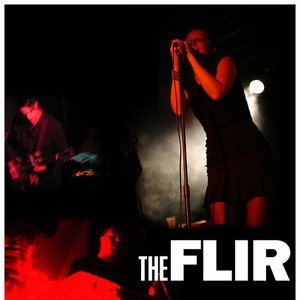 Image for 'The Flir'