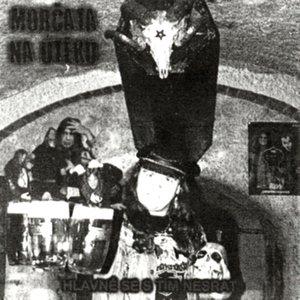 Image for 'Hlavně Se S Tím Nesrat'