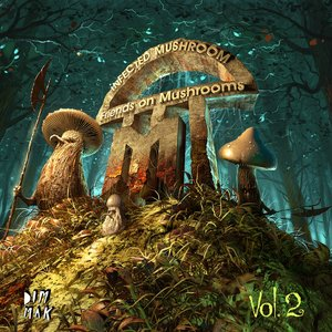 Image for 'Friends On Mushrooms, Vol. 2'