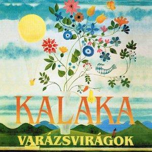 Image for 'Varázsvirágok'