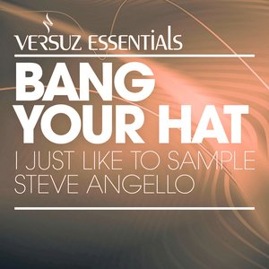 Image for 'I Just Like to Sample Steve Angello'