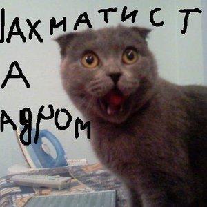 Bild für 'За Кадром'