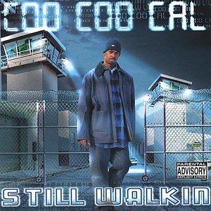 Image for 'Still Walkin'