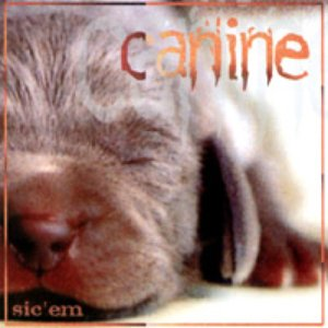Image for 'Sic 'em'