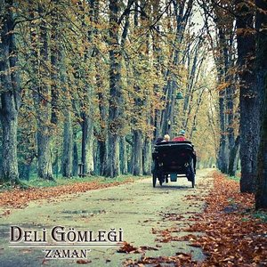 Image for 'Zaman'