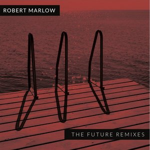 Image for 'The Future Remixes'
