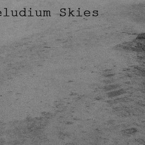 Image for 'Deludium Skies'