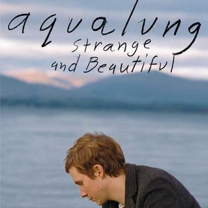 Image pour 'Strange and Beautiful'