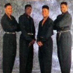 Bild für 'Basic Black'