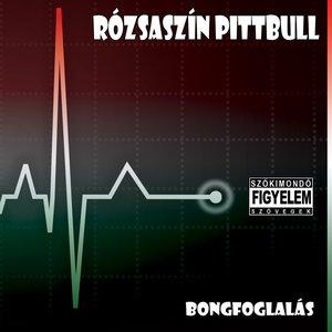 Bild für 'Bongfoglalás'