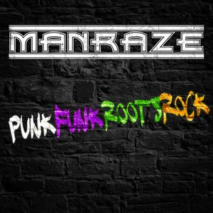 Image for 'Punkfunkrootsrock'