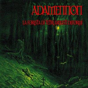 Image pour 'La Foresta Di Tetri Arbusti Deformi'